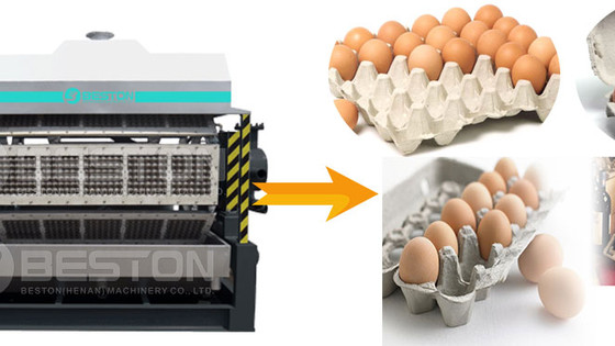 Good Reasons To Purchase A Semi-Automatic Egg Tray Machine