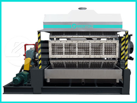 Automatic Egg Tray Machine - Key Features To Learn