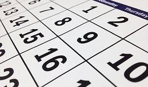 kill bed bugs calendar.jpg