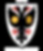 afc-wimbledon-logo.png