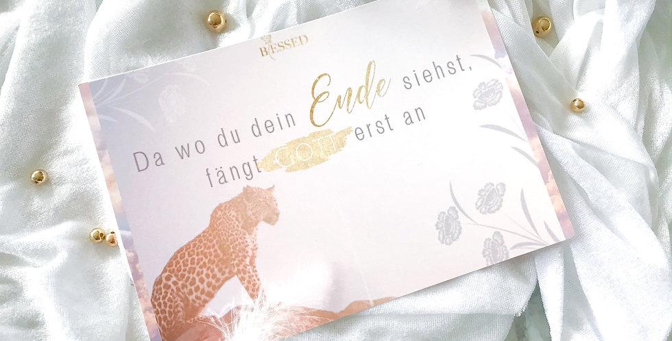 XL- Postkarten