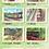 Thumbnail: 地域の塗り絵 -静岡県 大井川鉄道編-