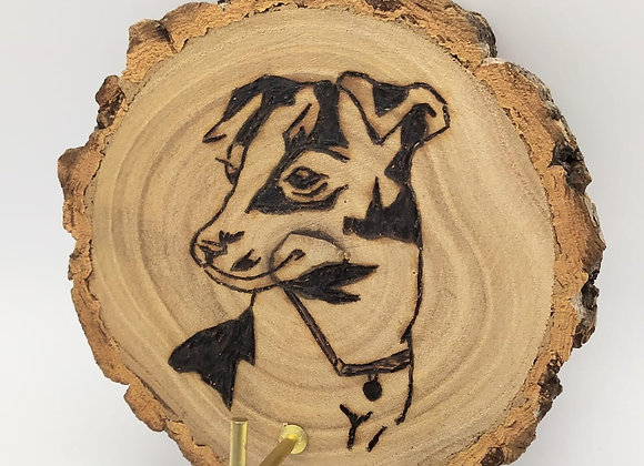 Jack Russell Pyrography wall hanger