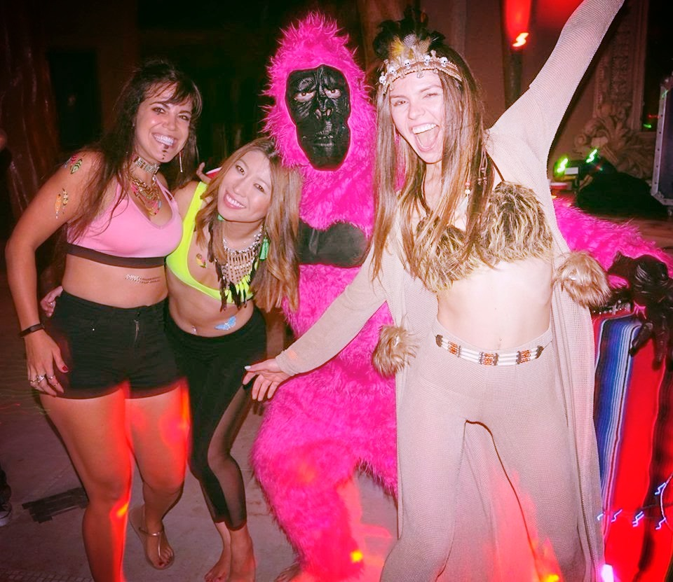 Pink Gorilla and his ladies