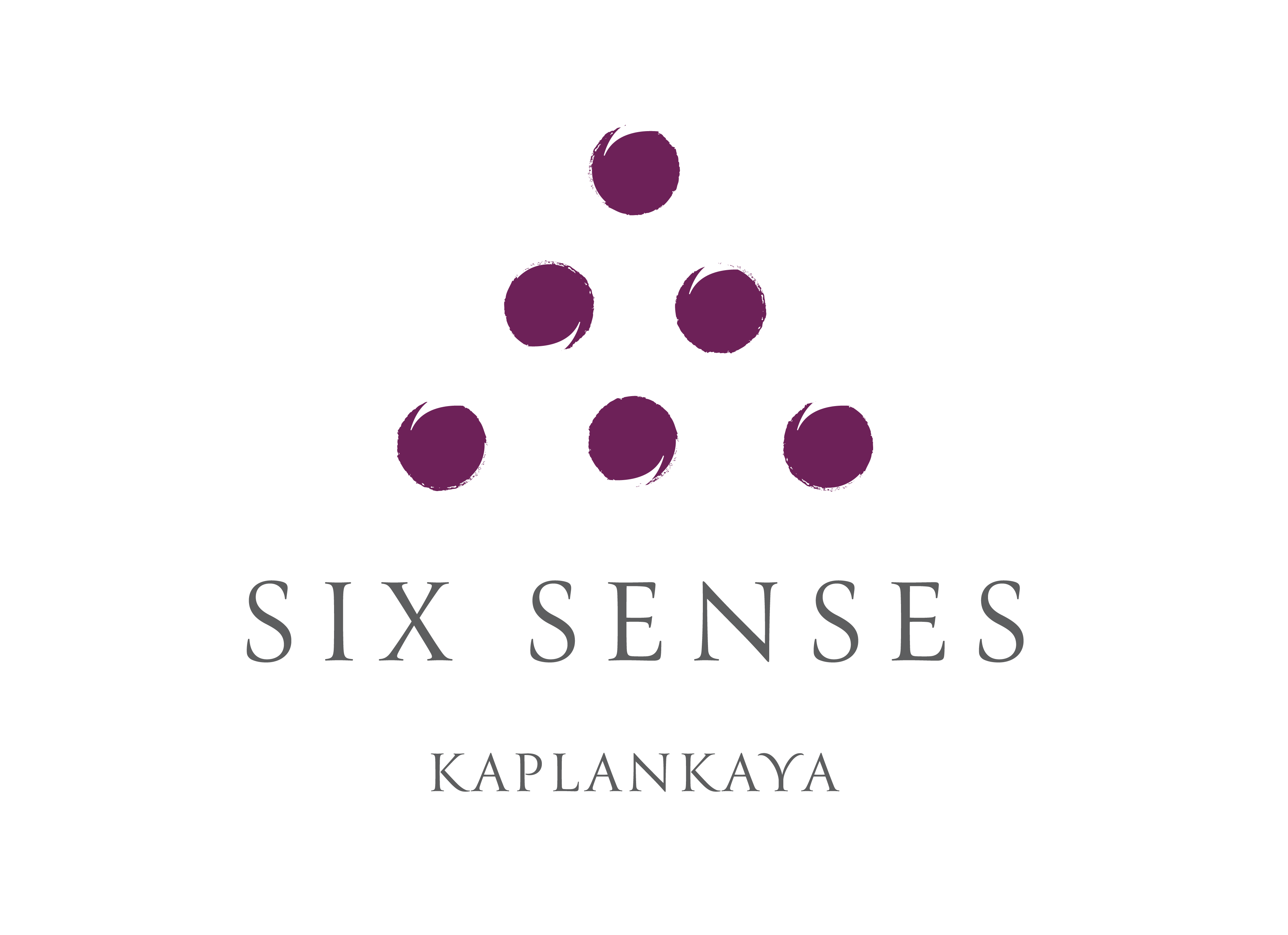 SS_Kaplankaya_standard_logo