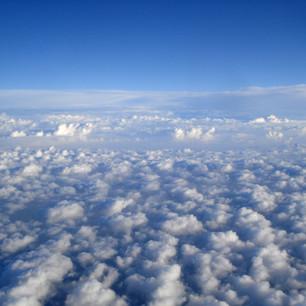 Обязательный PCR-тест на Covid-19  - требования для пассажиров Emirates Airlines