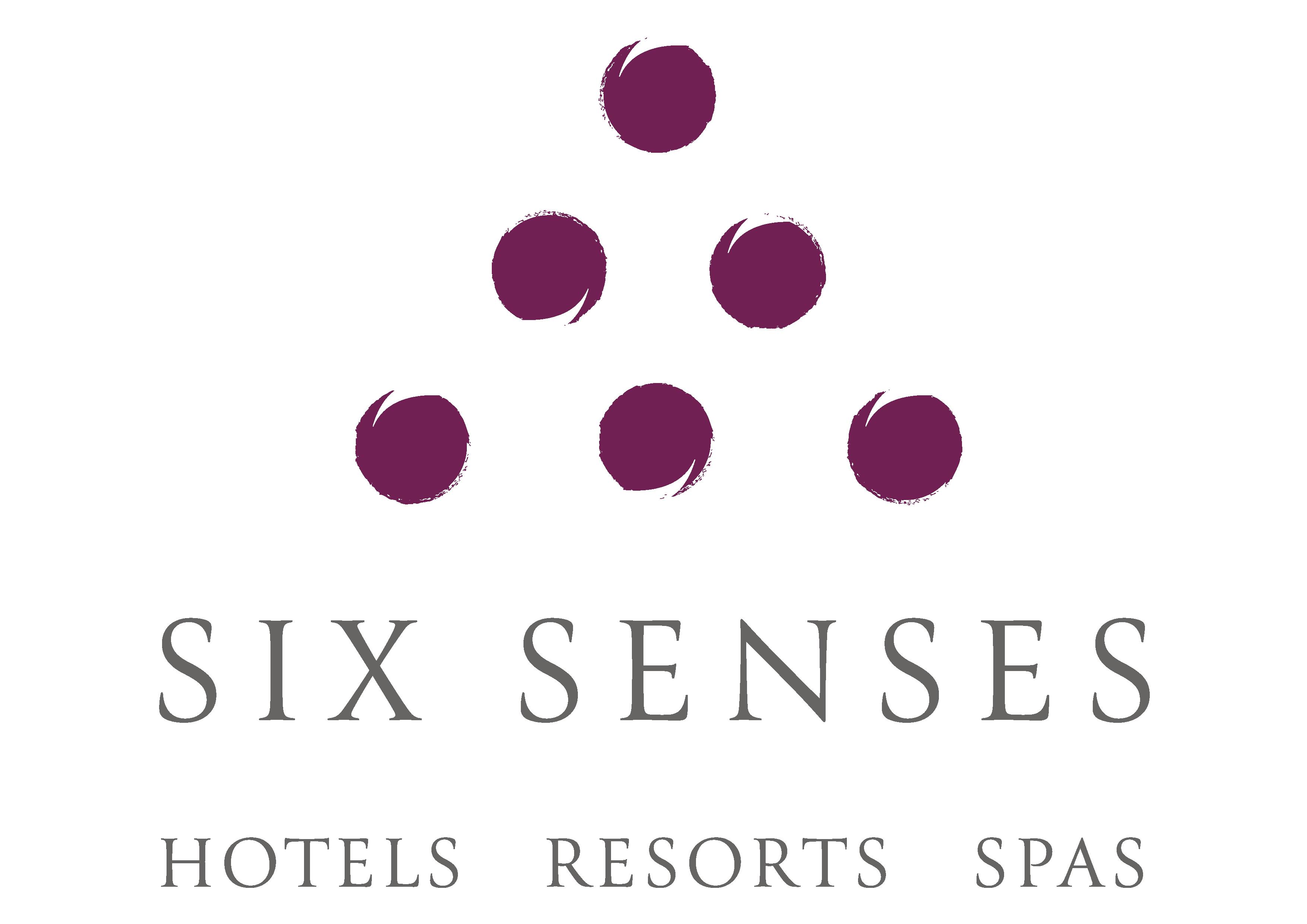 SS_BRAND_standard_logo