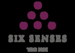 SS_Yao_Noi_standard_logo