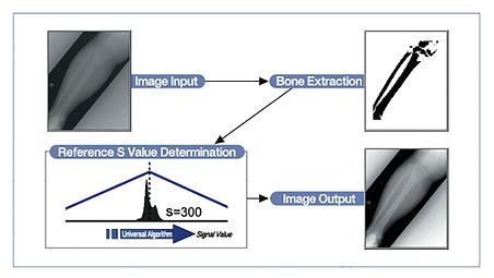Konica Minolta Integral Processing