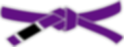 479px-BJJ_Purple_Belt.svg.png