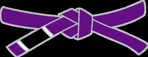 479px-BJJ_Purple_Belt.svg.png