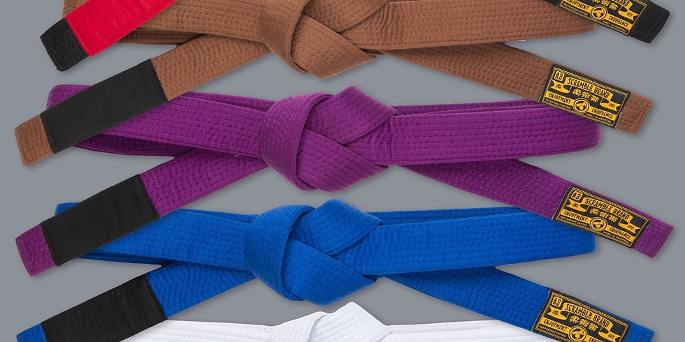 Terminsgradering / Grading / some new belts