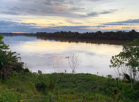 Protecting One of the Amazon's Last Free-Flowing Rivers