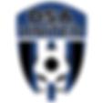 DSA-logo-blue-small.png