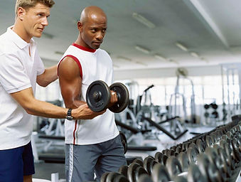 Bicep curl | Life Balance Fitness UK