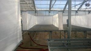 greenhouse1-300x168.jpg