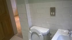 Bathroom Access Panel