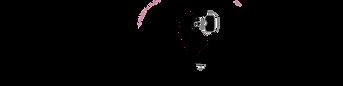 logo horizon 2.png