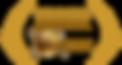 Accolade-Merit-logo-Gold-1024x542.png