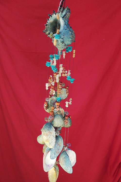 #134  Blue Spinny Conch Shell  with 18 cockle shells  3x21  1# 2.2oz