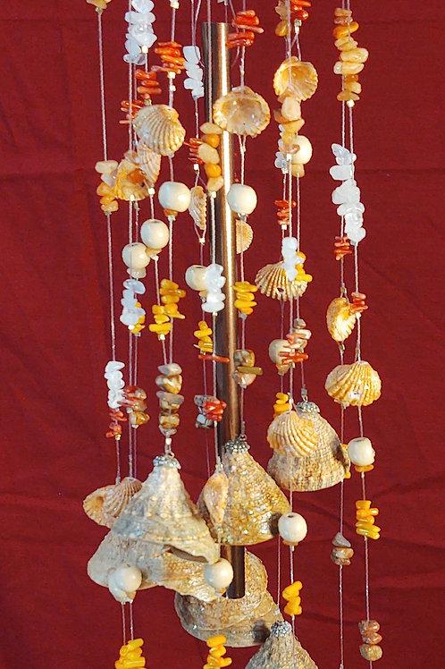 #97  24x5 ...wt 1lb 8.6oz  Orange Clam with Turban Shells