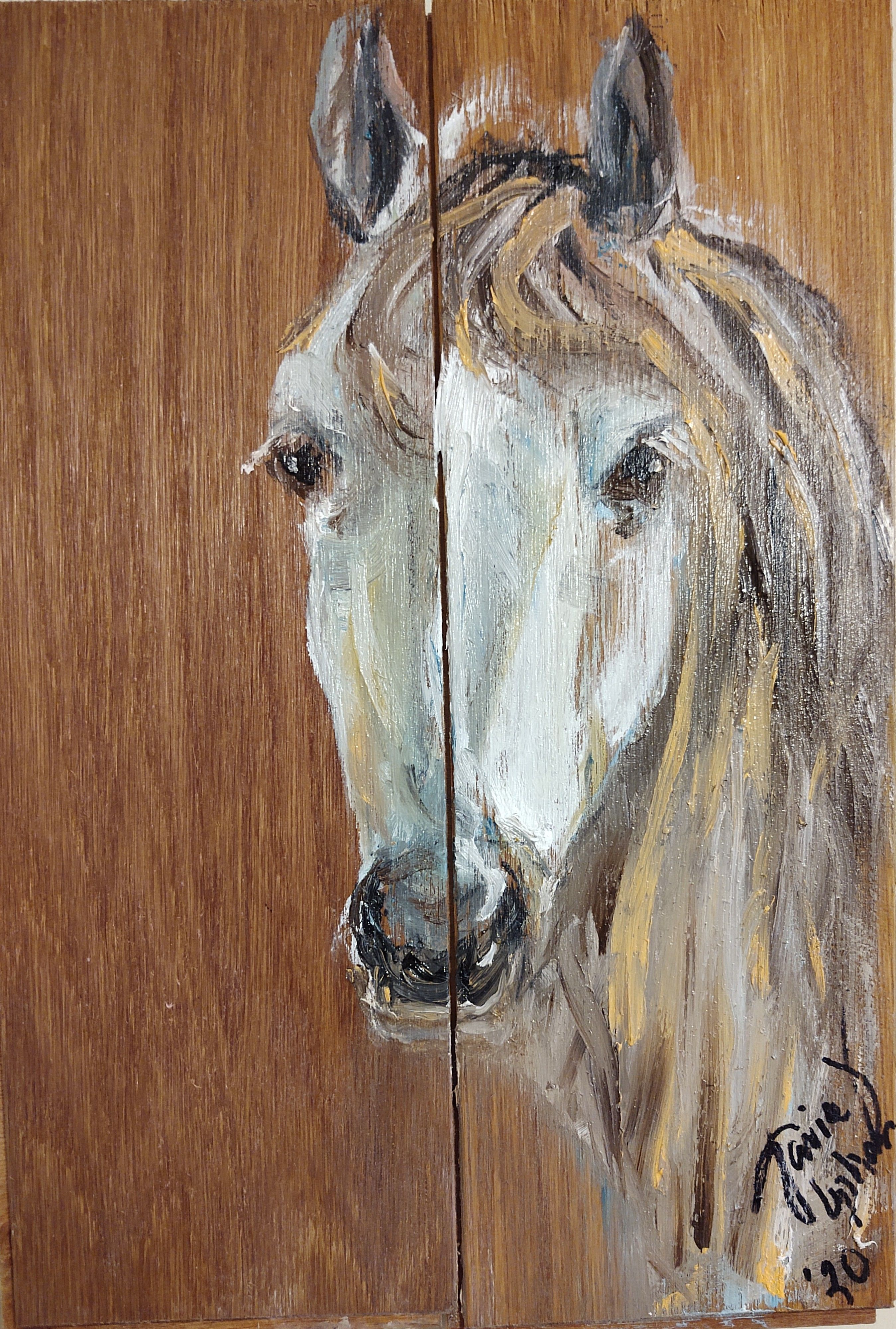 A Horse Named Silver