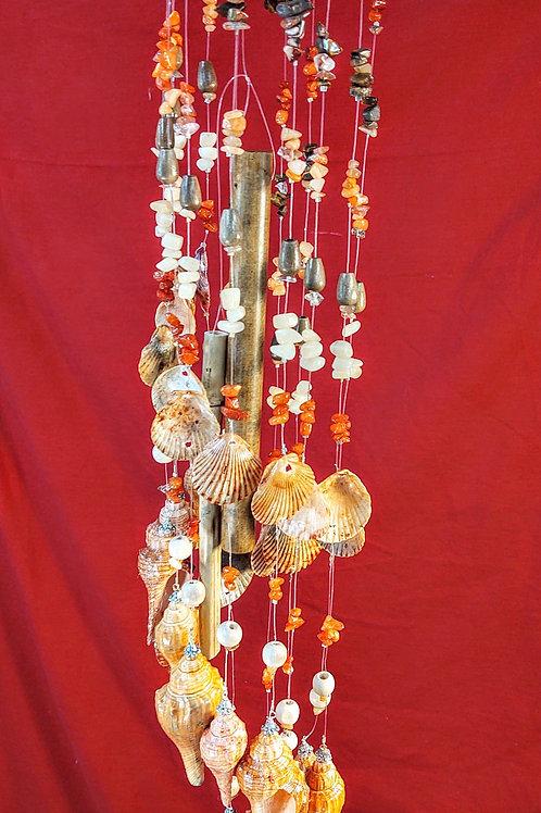 "#142  4""19  1# 1.4oz  Orange Clam with 13 Latirus Shells  and  clams"