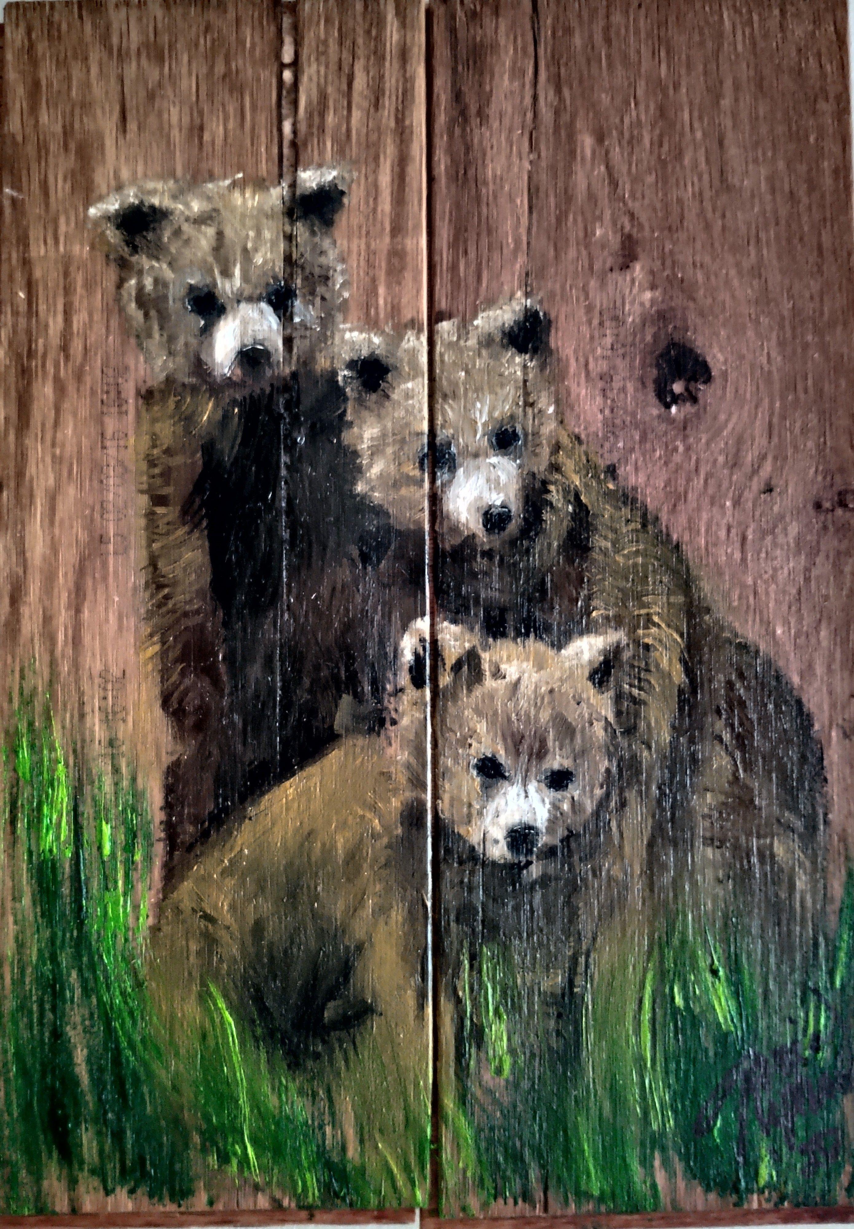 3 Baby Bears