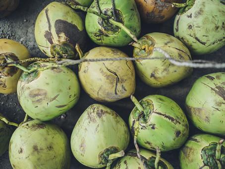 The Versatile Coconut Fruit