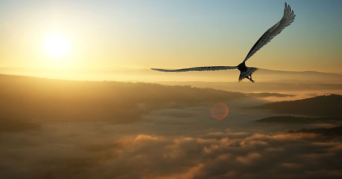 HYMN 85 On Eagle's Wings