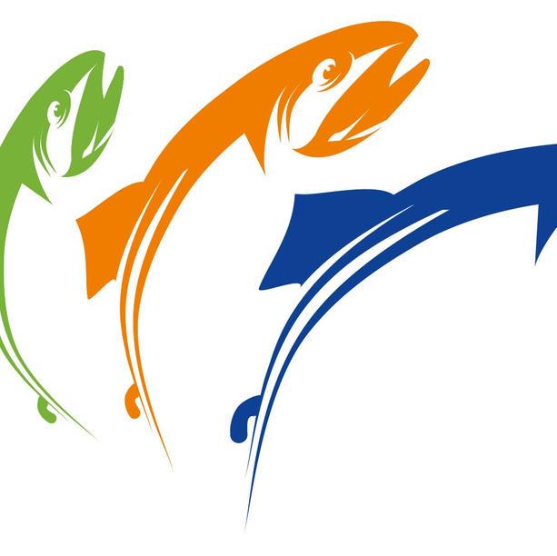 Hanke: Saimaan Kestävä Kalastus