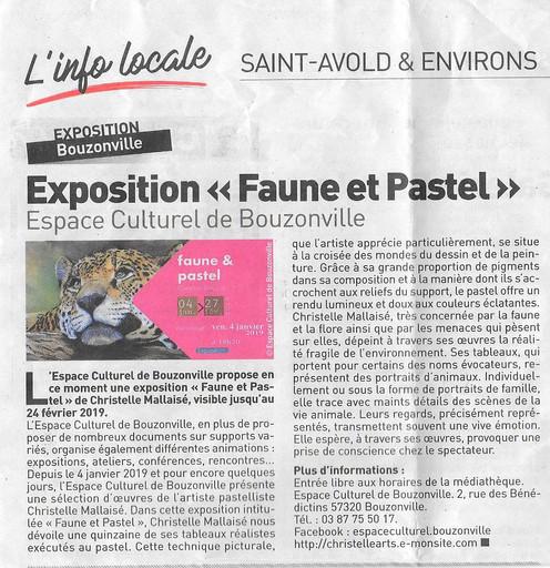 Expo perso Médiathèque Bouzonville.jpg