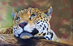 Songe d'un jaguar