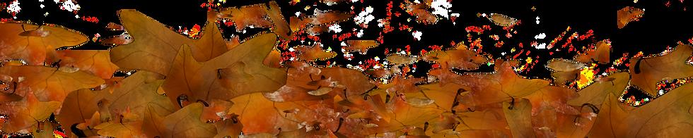hojas_otoño_fondo2.png