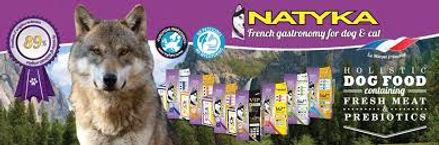 Logo de Natyka