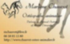 Logo Ostéopathe animalier