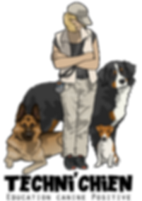 éducateur canin et ses chiens