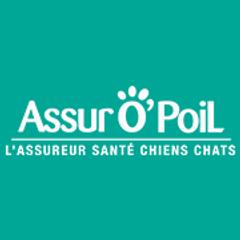Logo assurance pour chien