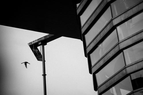 MR_160616_Cliff_Diving_Copenhagen_0006.j