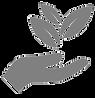 Naturopath herbals