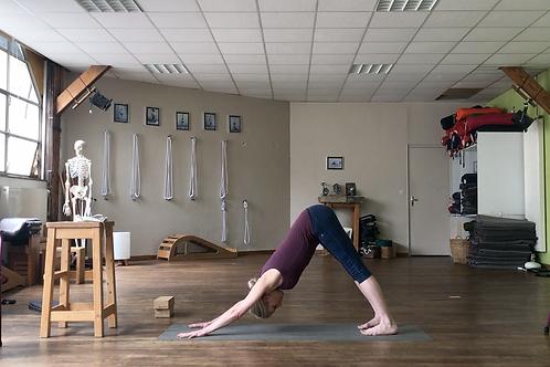 Yoga Iyengar - Vidéo #Y3 - avec Julien Cailleux