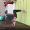 Thumbnail: Yoga Iyengar - Vidéo #Y5 - avec Piccarda
