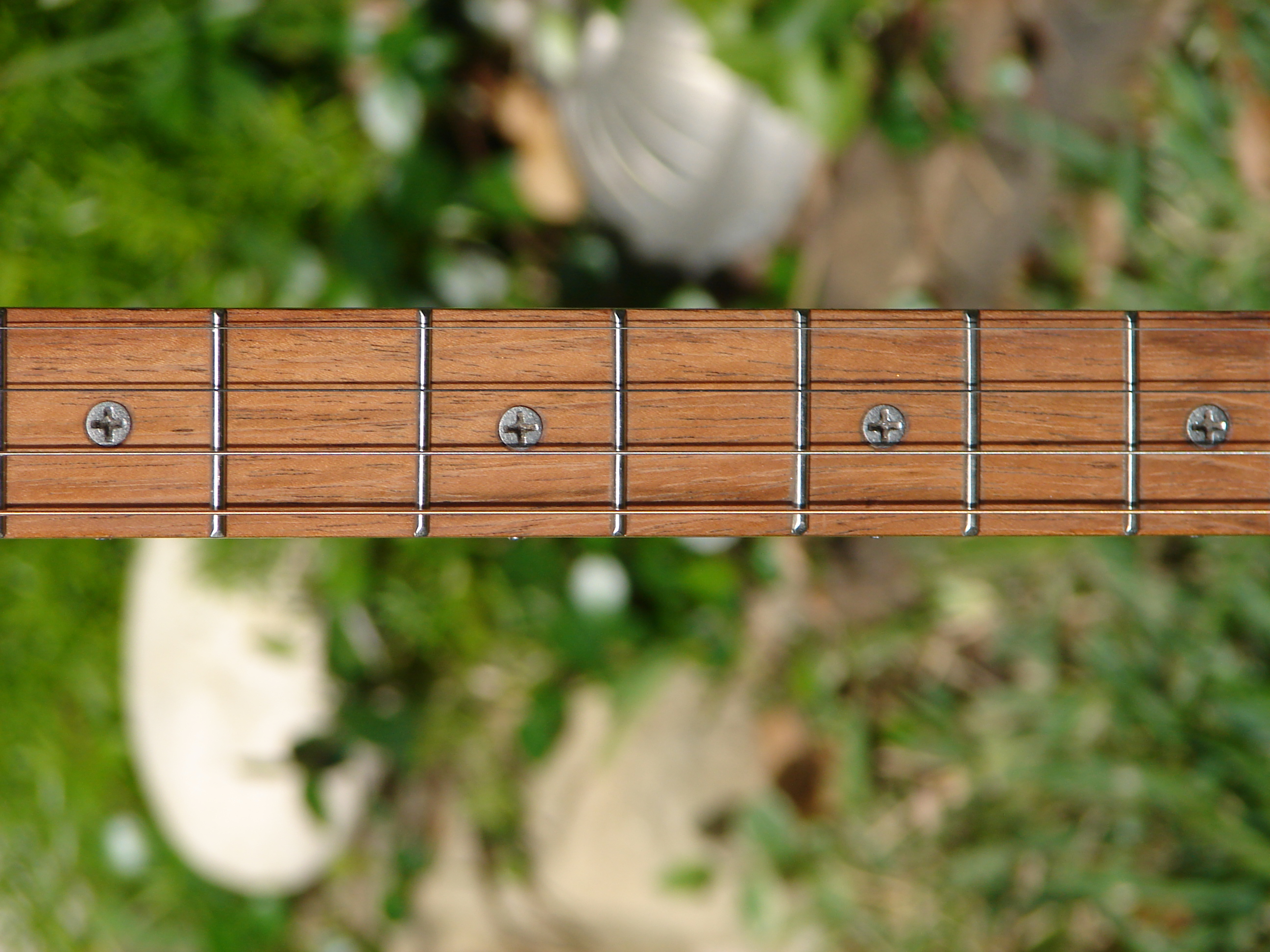 Stainless Philips Head Fret Markers