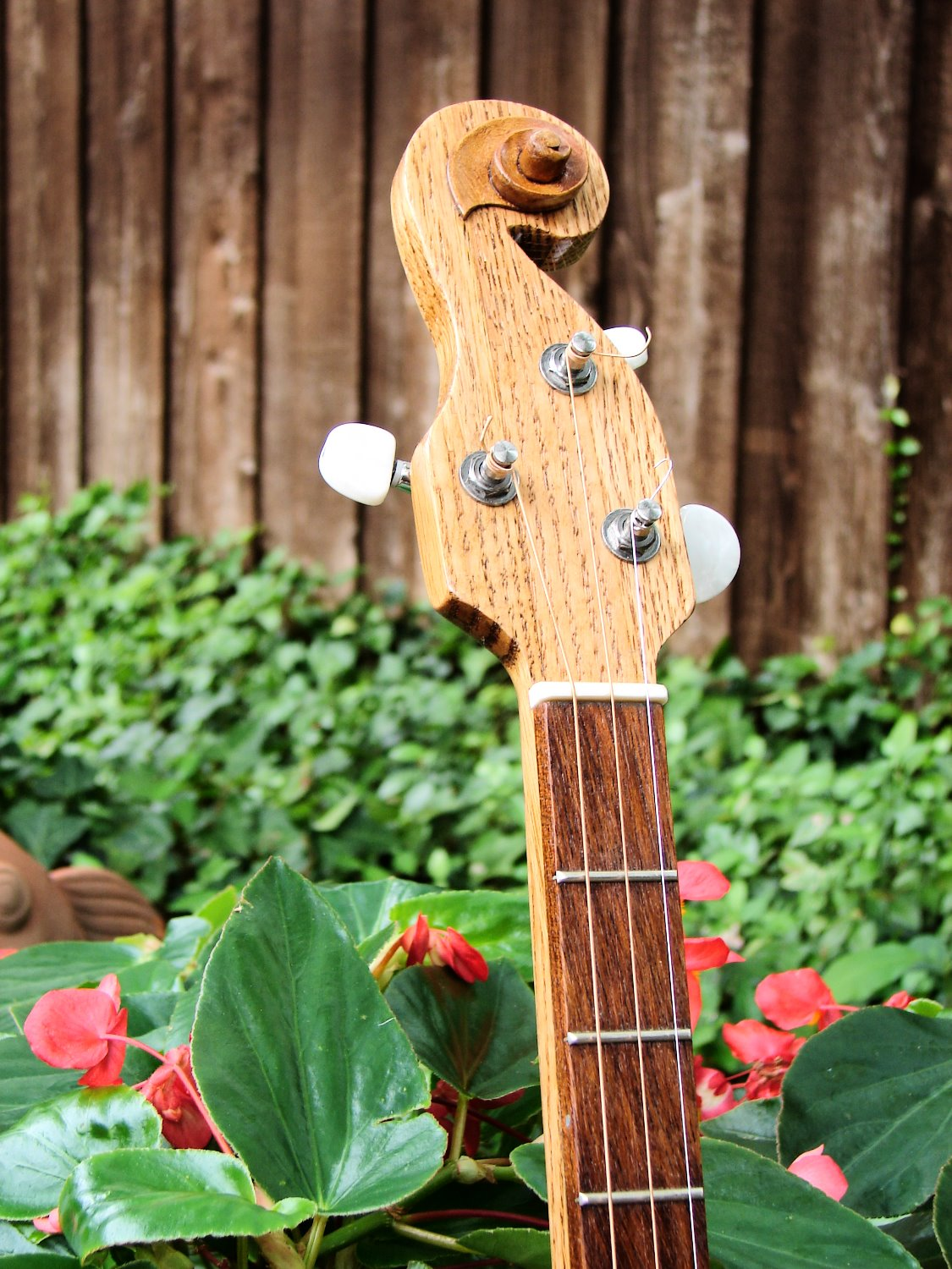 Oak neck & jatoba fret board