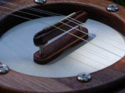 Banjo Style Resonator