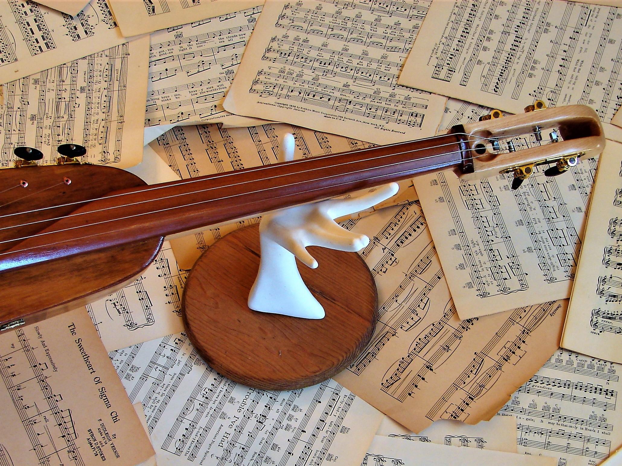 Re-purposed Cello Fretboard