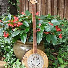 Bowl Guitars/Banjos