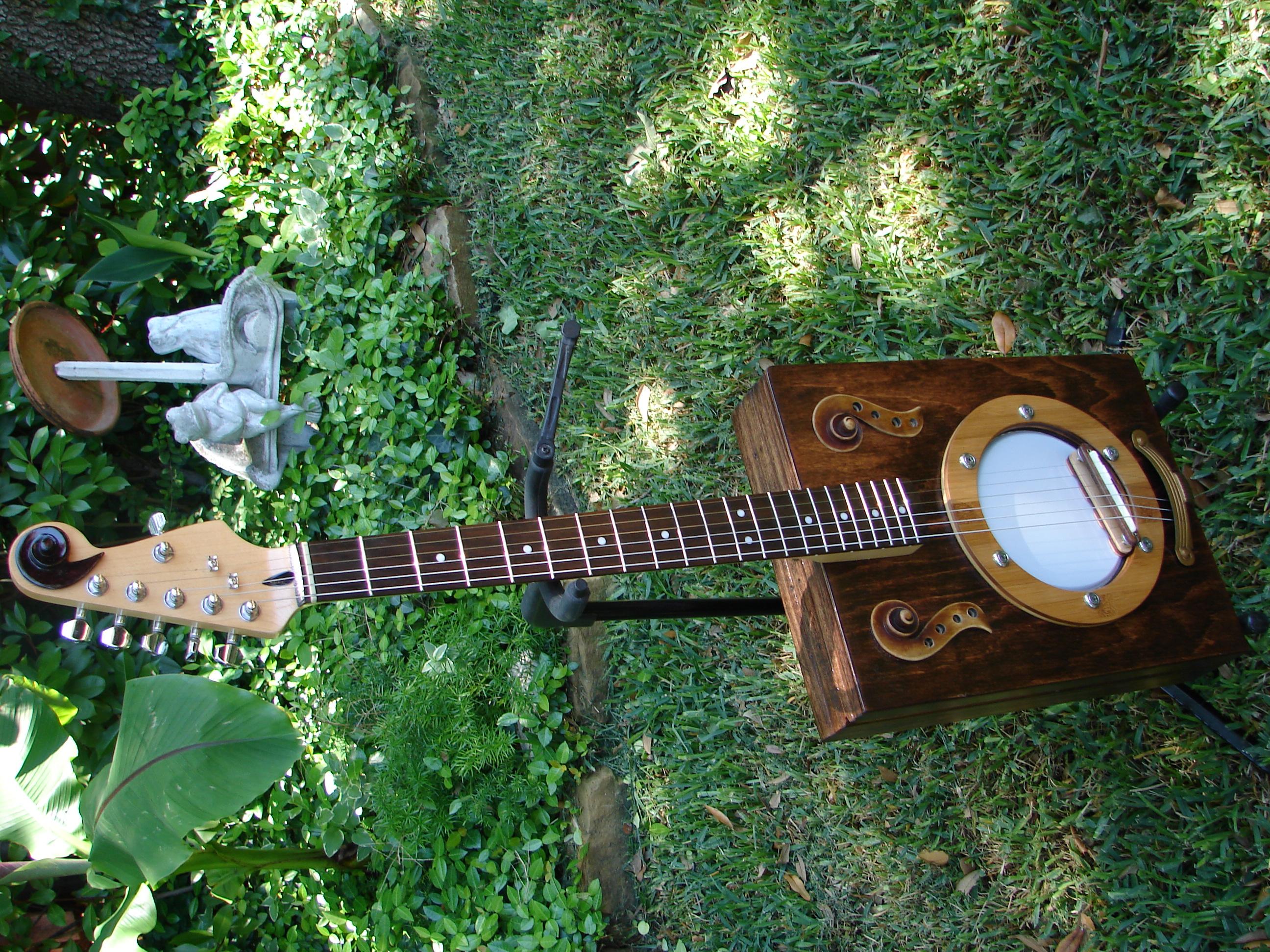 Banjelica - 6-String Banjo/Guitar