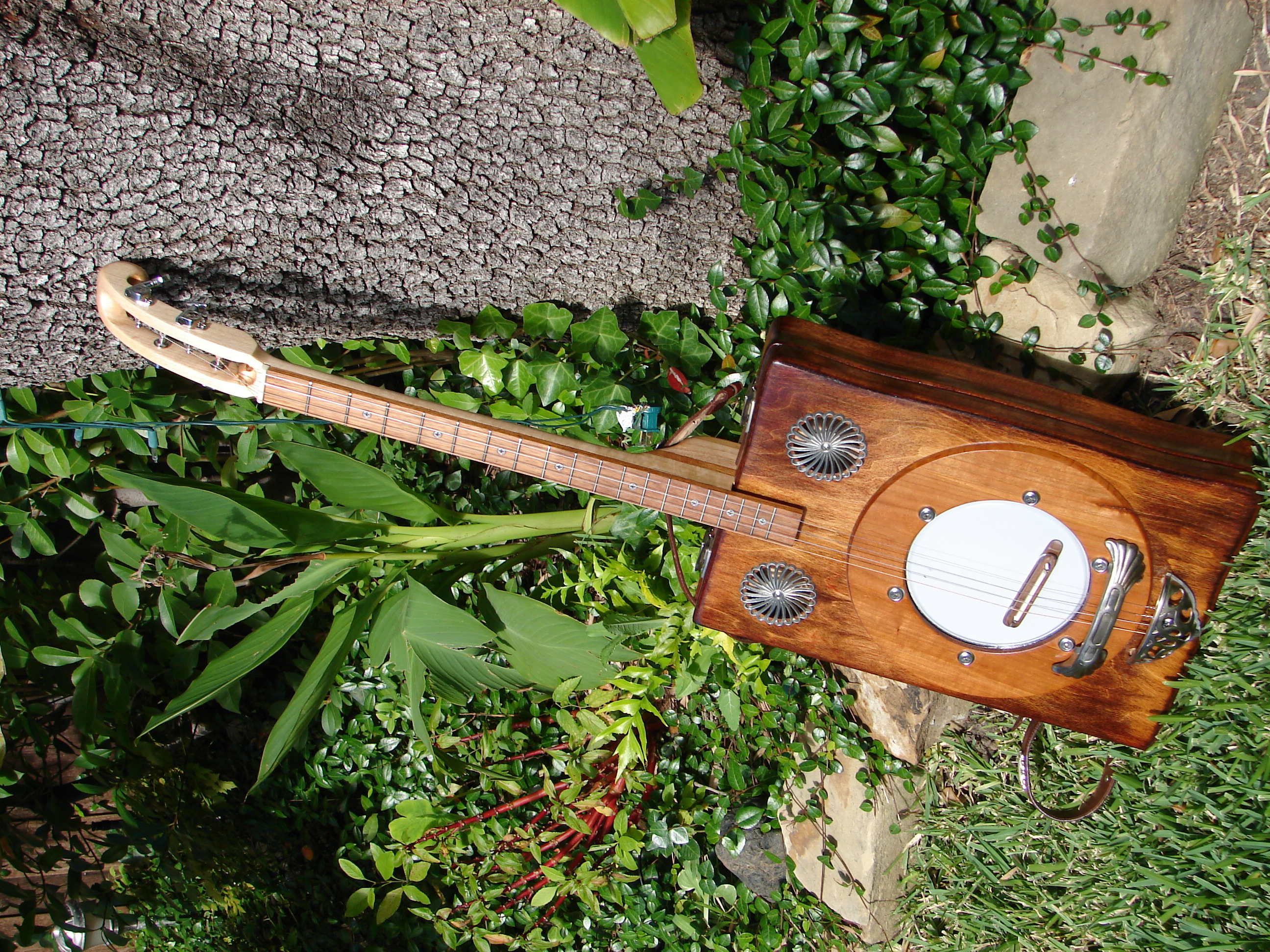 Leo - 4-String Banjo