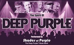 Shades of Purple